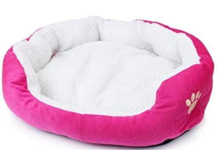 Amazon.com : Bag Super Soft Small Animals Dog Cat Bed Pet ...