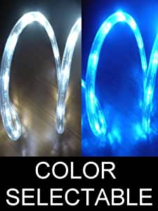 10Ft Color Selectable Rope Lights; ocean blue and pure white LED Rope Light Kit; Christmas Lighting; outdoor rope lighting