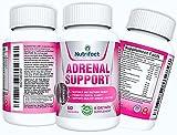 Best Adrenal Fatigue Supplements - Nutrifect Nutrition Adrenal Support Supplements, Natural Cortisol Regulator Review