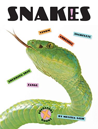 X-Books: Snakes image