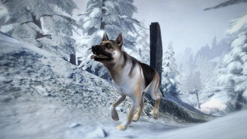 fable-iii-dog-breed-set-online-game-code