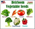 Heirloom Vegetable Seeds - NON Gmo- Easy to Grow - Variety of the Most Popular Vegetable Seeds- Variety of Vegetable Seeds