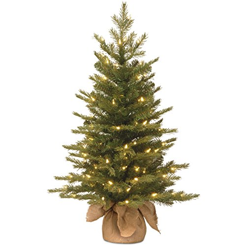 National Tree 2 Foot Nordic Spruce