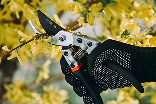 Professional Bypass Pruning Shears | Heavy Duty Garden Scissors with Non-Slip Handles | Garden Pruners, Clippers and Tree Trimmers with SK5 Sharp Blade | Bonus Gardening Gloves | Great as GlFT by GLC Star (Image #1)