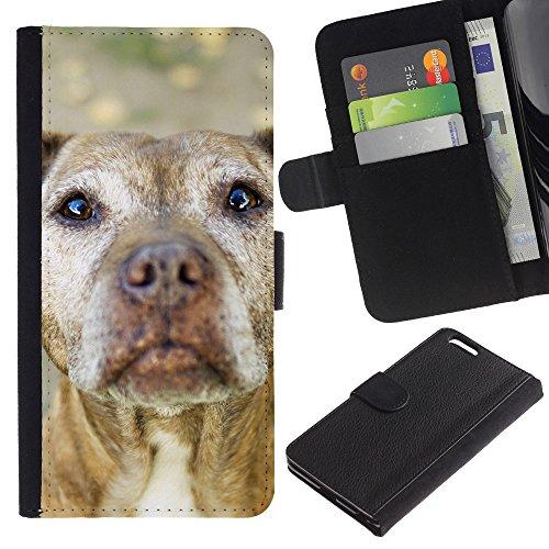 EuroCase - Apple Iphone 6 PLUS 5.5 - American pit bull terrier dog canine - Cuero PU Delgado caso cubierta Shell Armor Funda Case Cover