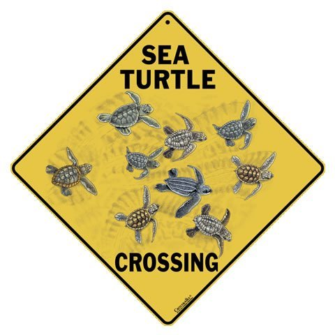 CROSSWALKS Sea Turtle Crossing 12