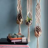 ecofynd® Macrame Cotton Plant Hanger [Without Pot] | Rope Flower Pot Holder for Indoor Outdoor Balcony Garden Wall | Home Décor Basket Hanger (3 Pack - M11)