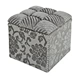 Jennifer Taylor Home Natalia Collection Modern Hand Tufted and Nailhead Trim Living Room Lifted Storage Ottoman, Gray For Sale