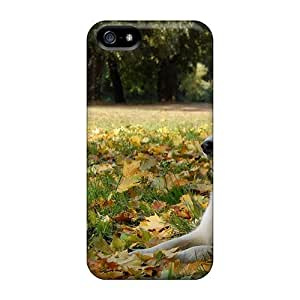 FEdYnKS7461hcowY Tpu Phone Case With Fashionable Look For Iphone 5/5s - Beautiful Husky In Autumn Leaves