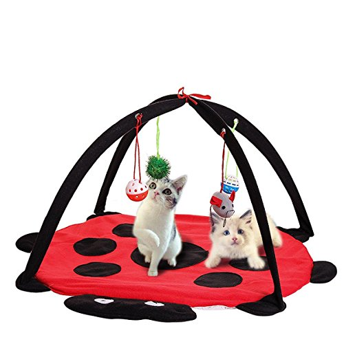 Pet Cat Play Bed Activity Tent Playing Toy