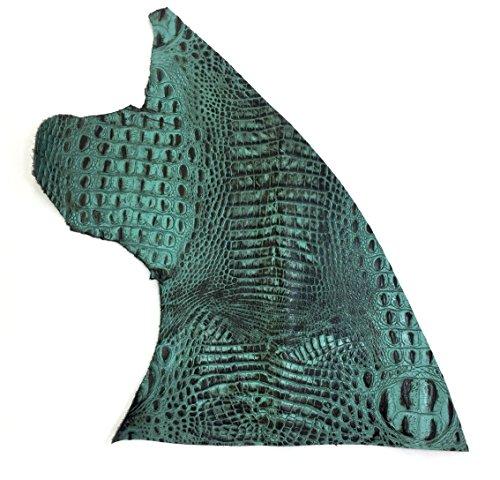 (Italian Hornback Crocodile Embossed Cowhide Leather (1 SQFT, Aqua/Brown))