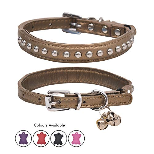 (Ultra Soft Real Lamb Leather Round Dot Charm Studded Cat Collar with Break Away Safety Elastic Embellished with Detachable Handcrafted Indian Bells (One Size, Gold))