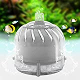 Mini Filter Goldfish Bowl Beta Fish Tank - High efficiency filtration breaks down toxic waste - Allows colonization of nitrifying bacteria - Slow current - Suitable for fry & small fish