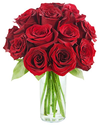 KaBloom Romantic Red Rose Bouquet: 12 Fresh Cut Red Roses (Long Stemmed) with Vase  - Packaged with Bloom2O, Shipped in Water, Delivered Hydrated