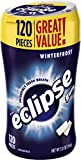 Eclipse Winterfrost Sugarfree Chewing Gum, 120 Piece Bottle