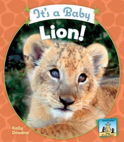 Download It's a Baby Lion! (Sandcastle: Baby African Animals) pdf