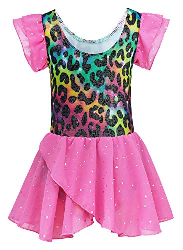 Kids4ever Gymnastics Leotards for Girls Leopard Ballerina Outfits for Toddler Girls Dance Dresses