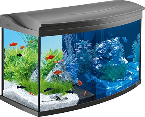 Tetra AquaArt Evolution Line LED Acuario 100 L – Set completo (incluso illuminazione a LED, interruttore luce diurna e…