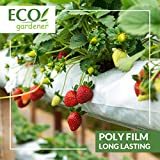 Black and White Poly Film – 10' x 50' 6mil, 4