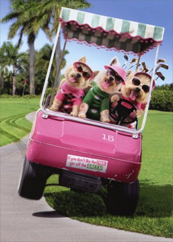 Three Dogs Riding Golf Cart