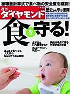 週刊 ダイヤモンド 2011年 4/23号 [雑誌]