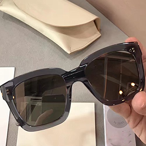 3cb46787c72 New Gentle man or Women Monster Sunglasses V brand Dreamer Hoff 01(1m) for Gentle  monster sunglasses-black frame Silver mirrored lenses  Amazon.co.uk  ...