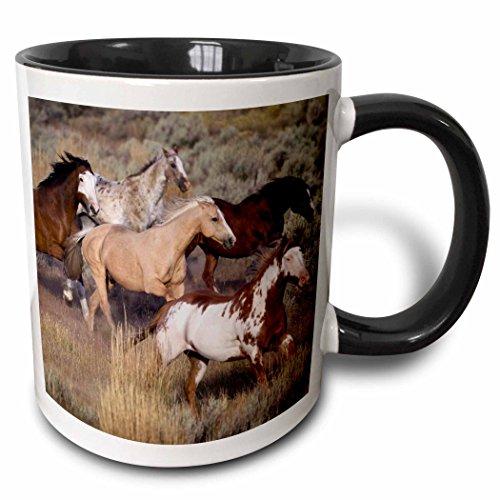 (3dRose 93557_4 Use, Oregon, Seneca, Ponderosa Ranch Horses-Us38 Bja0382-Jaynes Gallery Two Tone Black Mug, 11 oz, White)