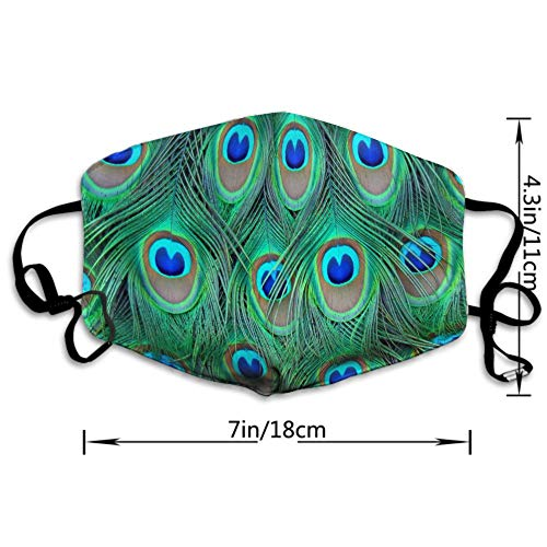 AGRBLUEN Unisex Breathable Reusable Adorable Green Peacock Mouth Mask, Adjustable Earloop Safety Anti Dust Pollution Half Face Mask for Running Cycling Travel Skiing