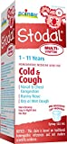 Best Cough Syrups - Boiron Children's Stodal Multi-Symptom Cough and Cold, 125 Review