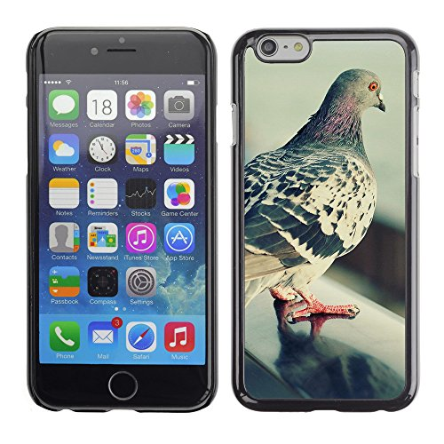 Premio Sottile Slim Cassa Custodia Case Cover Shell // V00003607 pigeon solitaire 2 // Apple iPhone 6 6S 6G 4.7""