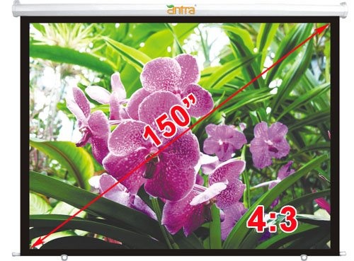 Great Features Of Antra PSA-150B Electric Motorized Projector Projection Screen (Matt White) for Hom...