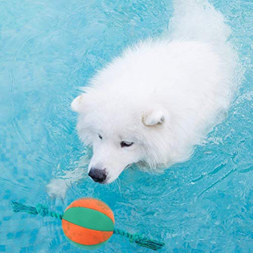 SCENEREAL Interactive Dog Pool Water Toys - Squeaky Rope Ball Floating Toy for Dogs Pets Playing & Training 15-inch