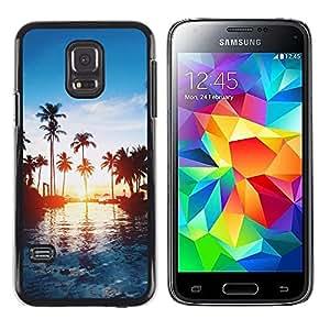 Dragon Case - FOR Samsung Galaxy S5 Mini, SM-G800 - talk about the main dish - Caja protectora de pl??stico duro de la cubierta Dise?¡Ào Slim Fit