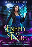 Enemy of Magic (New York Academy of Magic Book 3)