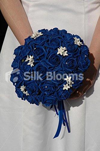 Blue stephanotis