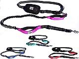 Black Rhino - Premium Hands Free Dog Leash for Running Walking Jogging & Hiking - Adjustable Length Dual Handle Bungee Leash Medium - Large Dog Neoprene Padded Handles - Free Running Pouch Pink/Bla