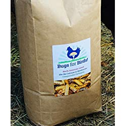 NORTH AMERICAN-RAISED Bugs for Birds! Better Than Mealworms - Dried BSF Larvae - Natural Chicken Feed Supplement / Wild Bird Treats - for Healthy Eggs and Feathers! (4lbs)