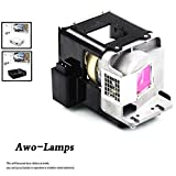 AWO BL-FU310A / FX.PM484-2401 Replacement Lamp with Housing Fit For OPTOMA X501/W501/EH501/EW420/HD151X/HD36