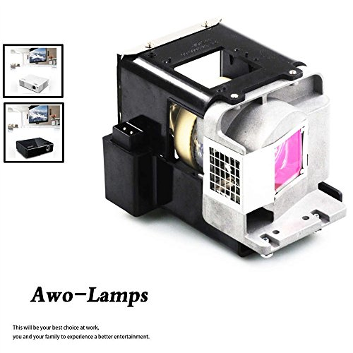 AWO BL-FU310A / FX.PM484-2401 Replacement Lamp with Housing Fit For OPTOMA X501/W501/EH501/EW420/HD151X/HD36 by AWO
