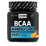 USN Fruit Fusion BCAA Amino Gro