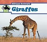 Giraffes, Julie Murray, 1617832197