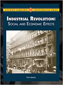 social effects of the industrial revolution The lesson illustrates the positive and negative effects of the industrial revolution by focusing on the reality for manchester, england students learn about the working conditions, social.