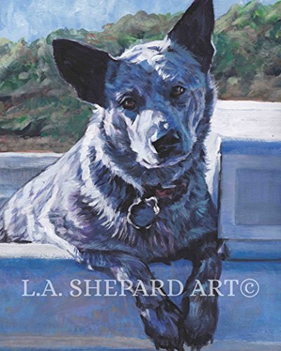 An Australian Cattle Dog blue Heeler art portrait print of an LA Shepard painting 8x10