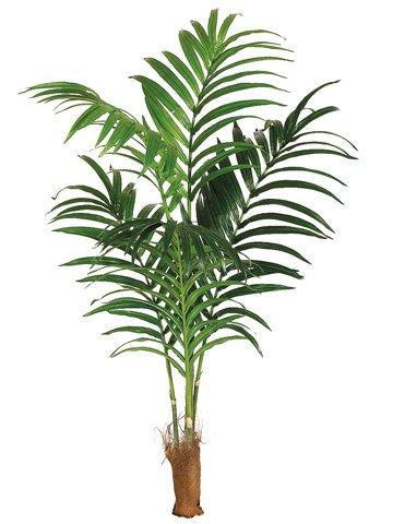 ONE 7' Artificial Tropical Kentia Palm Tree with No (Kentia Palm Tree)