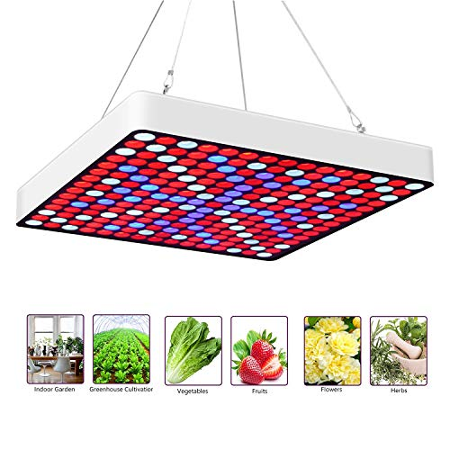 Gtmar 50W LED Grow Light for Indoor Plants Growing Lamp 225 LEDs Red Blue Plant Lights Bulb Panel for Greenhouse Tent Indoor Succulent Plants Seedlings Flowering Veg Bloom Hydroponic Garden