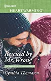 Rescued by Mr. Wrong (The Daughters of Dancing Falls)