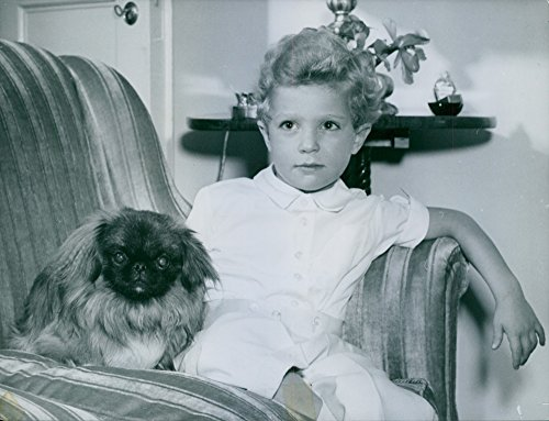Vintage photo of Crown Prince Carl Gustaf along with his playmate, Pekinesen Toy at Stockholm ()