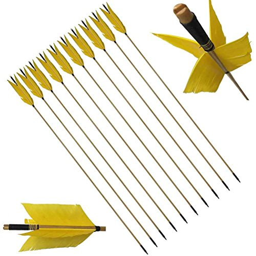 PG1ARCHERY Archery Target Flu-Flu Arrows, 6 Pack Traditional Wooden Arrow 4 Feathers Fletching for Practice Targeting Hunting Yellow]()