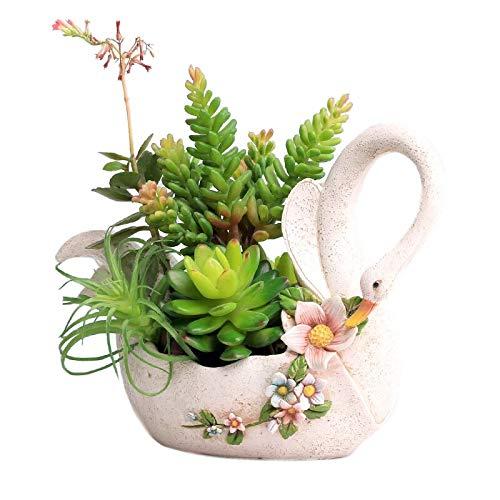 SweetLifeIdea Resin Swan Flower Planter Succulent Plant Pot Cactus Pot Flower Pot Container Bonsai Pot Gift Idea (Swan Pot)