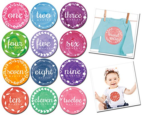 Sticky Bellies Baby Month Stickers - Painted Pixie
